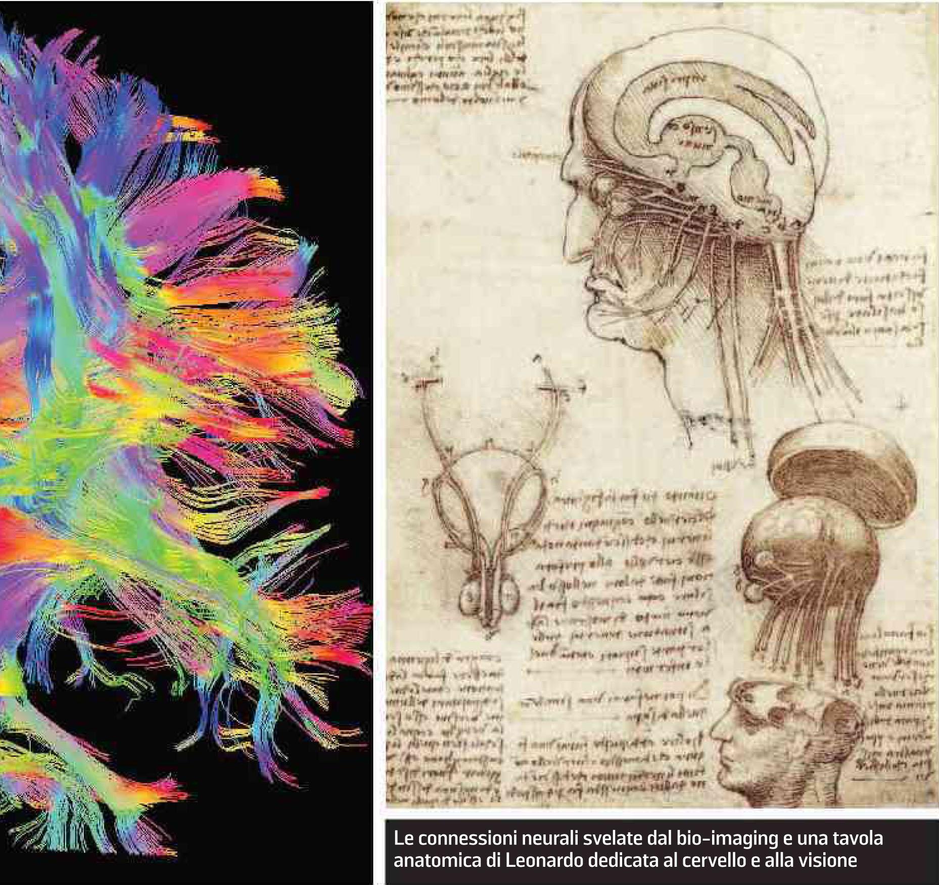 Che cosa ci insegna l'opera dell' icona del genio: educare e migliorare la mente è possibile Spicchiamo il volo con Leonardo