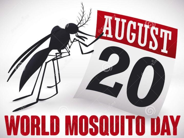 Zanzare fanno 725mila vittime l'anno, oggi è il mosquito day